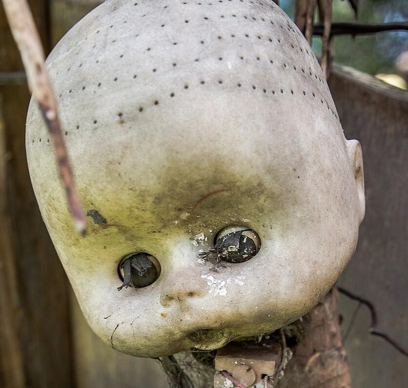 墨西哥恐怖的娃娃森林-娃娃岛