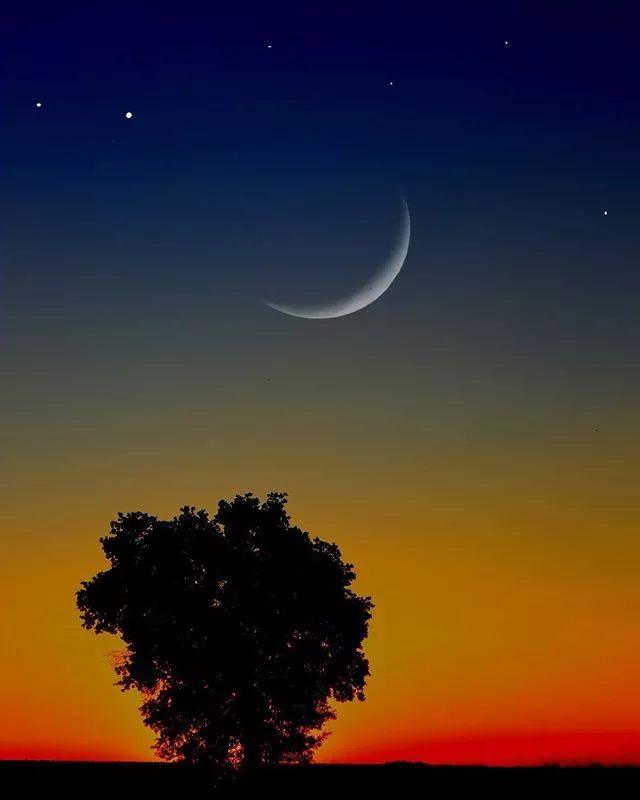 晚安心语简单一句话